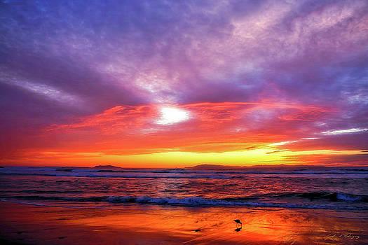 Sandpiper Sunset Ventura California by John A Rodriguez