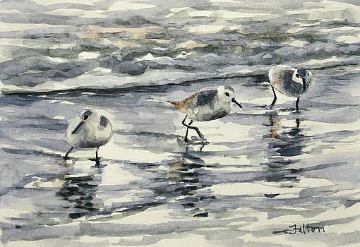 Sandpipers 3  12-11-17 by Julianne Felton
