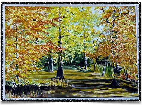 Sandringham woods. UK. by SJV Jeffery-Swailes