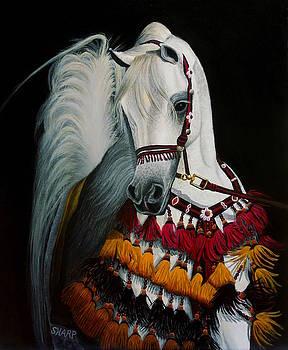 Arabian Horse  by Karen Sharp