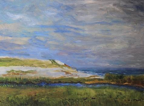 Sandwich Dune by Michael Helfen