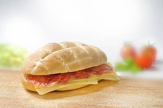 Sandwich With Salami And Cheese by Matjaz Preseren