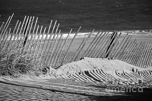 Sandy Beach Fence Landscape Photo by Melissa Fague