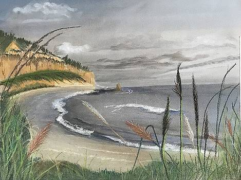 Sandy Cove by Peggy Paulson