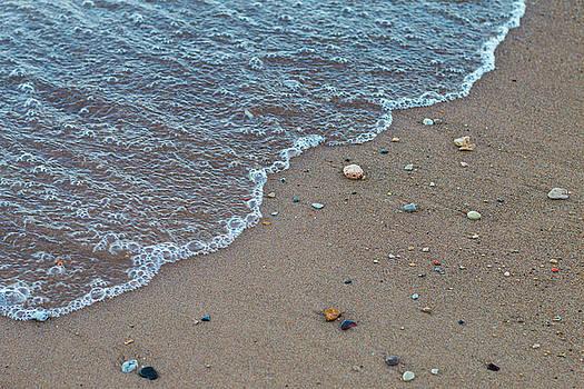 Sandy by Kelly Smith