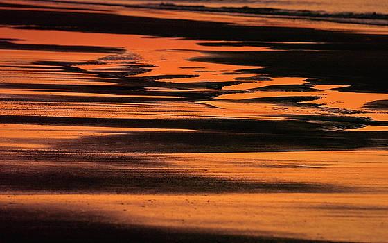 Sandy Reflection by Joe Shrader