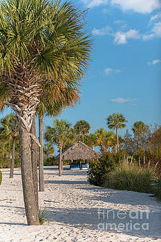 Sandy Toes and Palmetto Breezes by Dale Powell