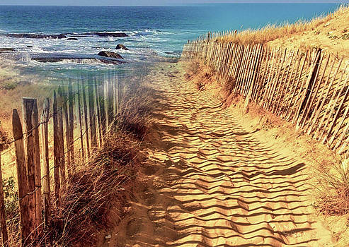 Sandy Track To The Ocean by Clive Littin