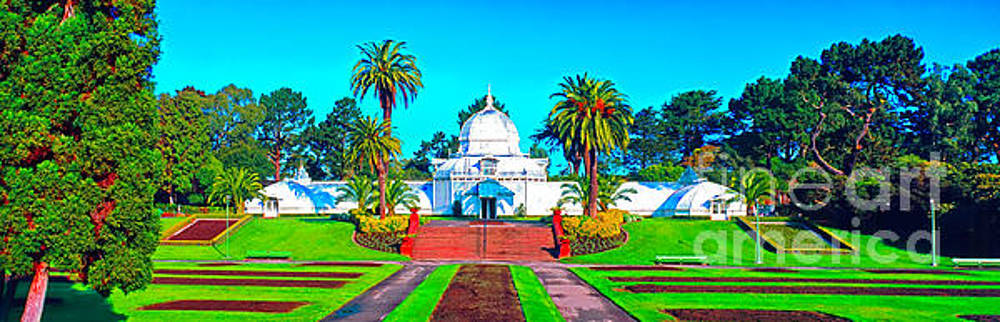 San Francisco Conservatory of flowers by Tom Jelen