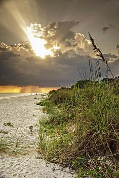 Sanibel Dune At Sunset by Greg Mimbs
