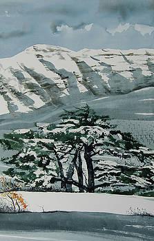 Sannine and Cedar by Martin Giesen