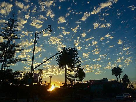 Santa Barbara California by Carol Tsiatsios