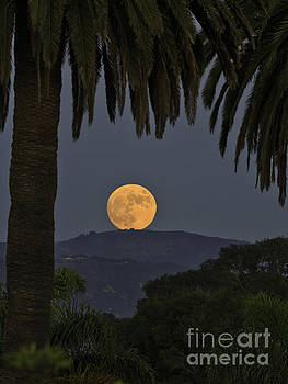 Santa Barbara Moonrise by Tim Hauf