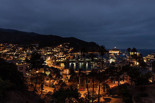 Santa Catalina Island Nightscape by Angela Stanton