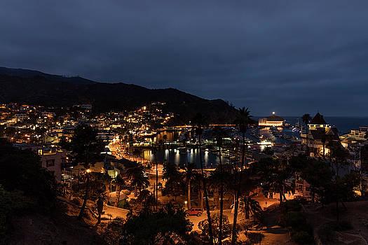 Santa Catalina Island Nightscape by Angela A Stanton