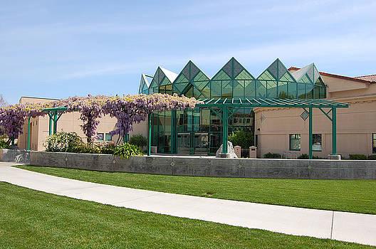 Santa Clara University by Carolyn Donnell