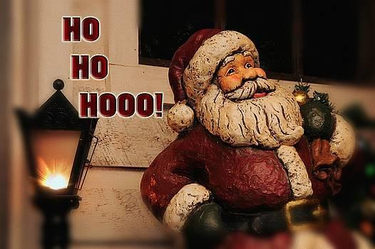 Lois Bryan - Santa Claus Christmas Card