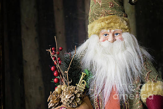 Santa Claus doll in green suit with forest background. by Cesar Padilla