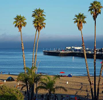 Santa Cruz Beach by Peter Ponzio