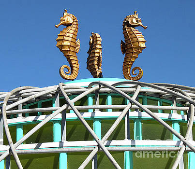 Santa Cruz Boardwalk Seahorses by Gregory Dyer