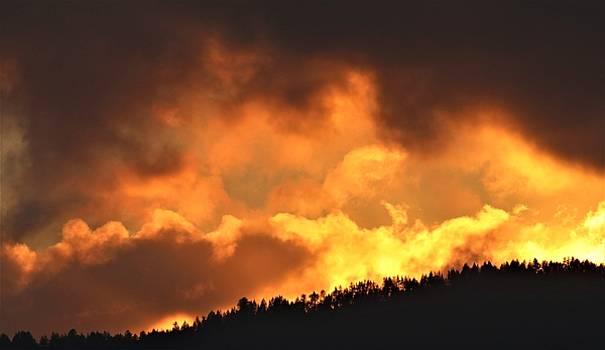 Santa Cruz Range by Elka Lange