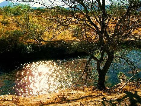 Kathleen Heese - Santa Cruz River