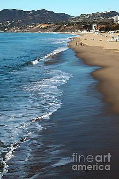 Gregory Dyer - Santa Monica Beach