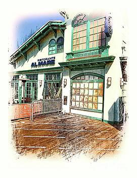 Santa Monica Pier Ver 2 by Larry Mulvehill