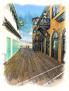 Santa Monica Pier Ver 3 by Larry Mulvehill