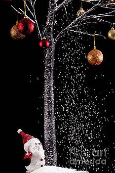Santa under a tree with snow on black background by Simon Bratt Photography LRPS