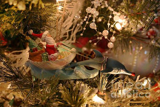 Santa's Dolphin Sleigh by Lynn Jackson
