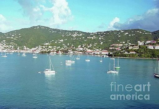 Gary Wonning - Santo Dominico Harbor
