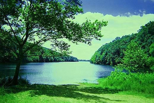 Sapphire Blue Lake by Lynn Wood