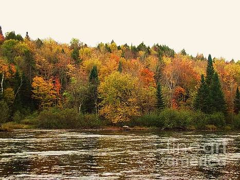 Saranac in the Fall by Jessica Wood