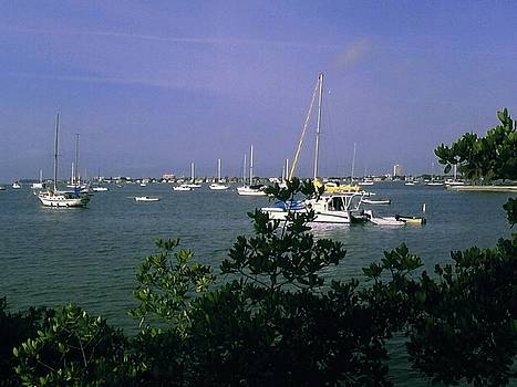 Gary Wonning - Sarasota Bay Harbor