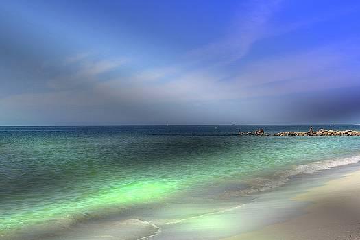 Sarasota ocean  by Athala Carole Bruckner