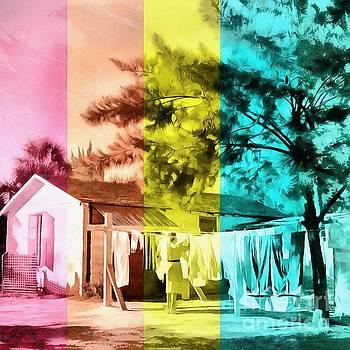 Sarasota Series Wash Day by Edward Fielding