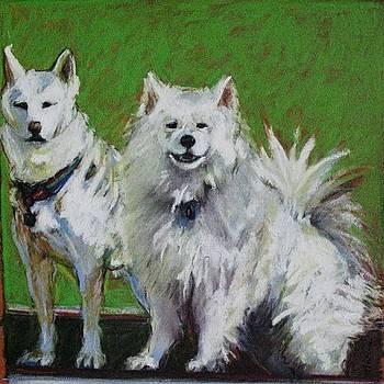 Saratoga Dogs by Michelle Winnie