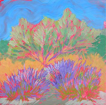 Sarris' Garden 1 by Pam Van Londen