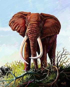 Satao II - The Elephant by Anthony Mwangi