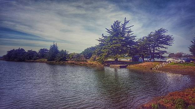 Saturday at Aquatic Park by Philip Hennen