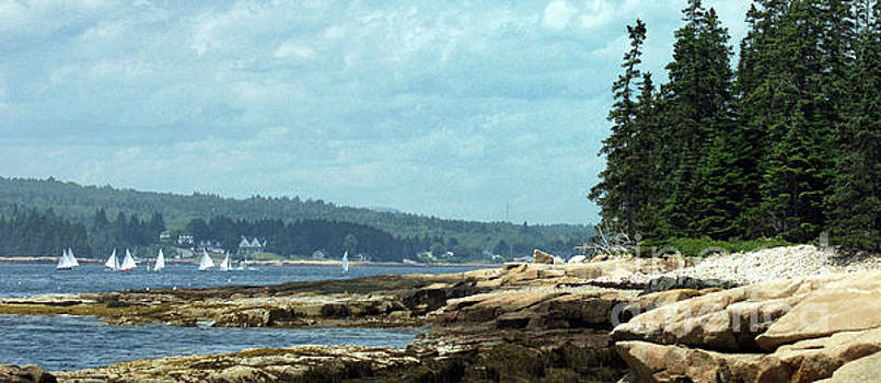 Saturday at Winter Harbor by Christopher Mace