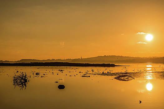Saturday Morning along the estuary  by Martina Fagan