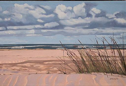 Sauble Beach August Breeze by Joan McGivney