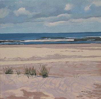 Sauble Beach Dunes by Joan McGivney
