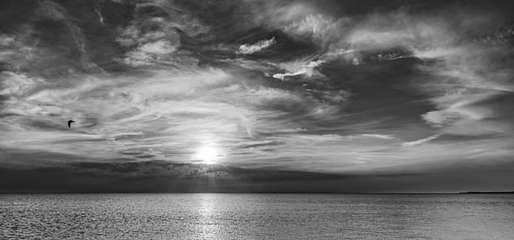 Sauble Beach Sunset 8 bw by Steve Harrington