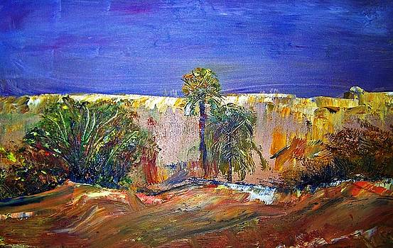 Saudi Arabian Desert by Patricia Taylor