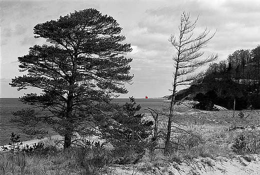 Saugatuck State Park in November by James Rasmusson