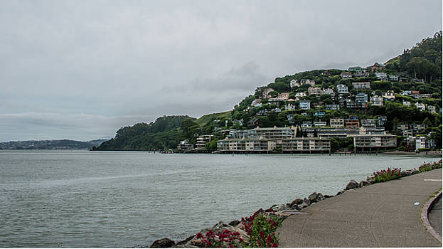 Sausalito, California by Andrew Hollen