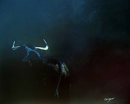 Savage bull by Jean Yves Crispo